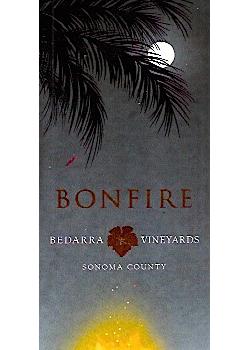 BedarraBonfire2